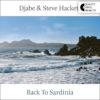 Djabe & Steve Hackett – Back To Sardinia (2LP) cover